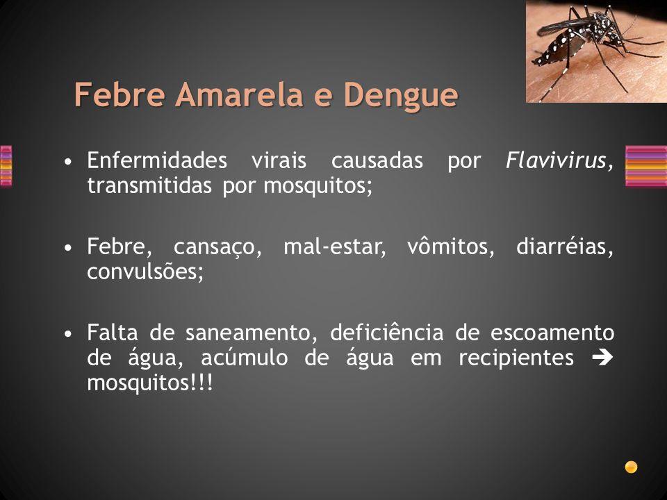 Febre Amarela e Dengue Enfermidades virais causadas por Flavivirus, transmitidas por mosquitos;