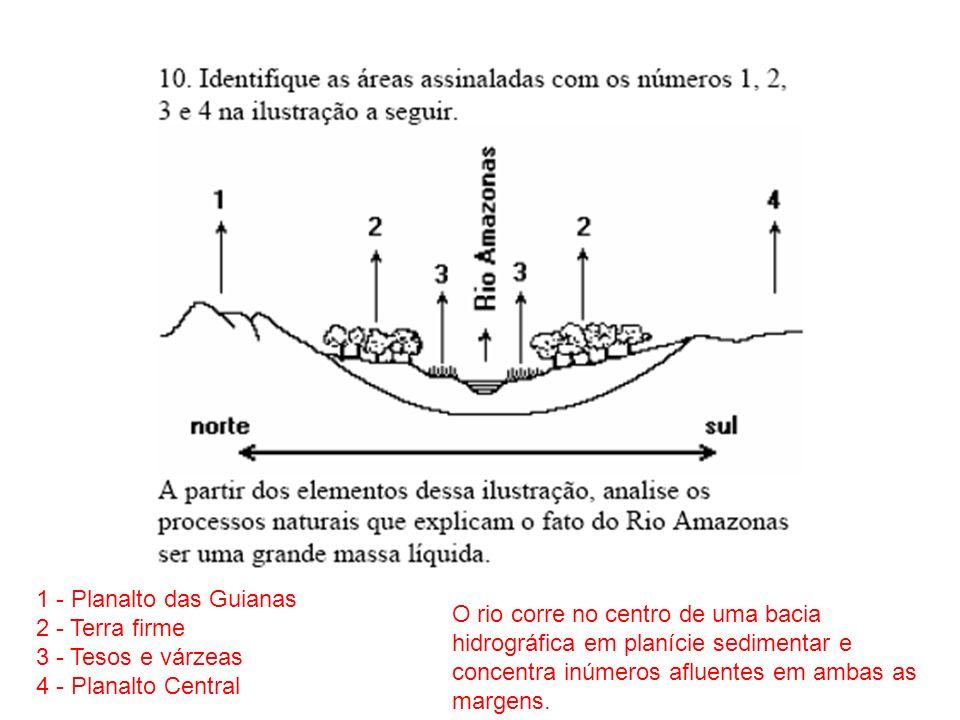 1 - Planalto das Guianas 2 - Terra firme. 3 - Tesos e várzeas. 4 - Planalto Central.
