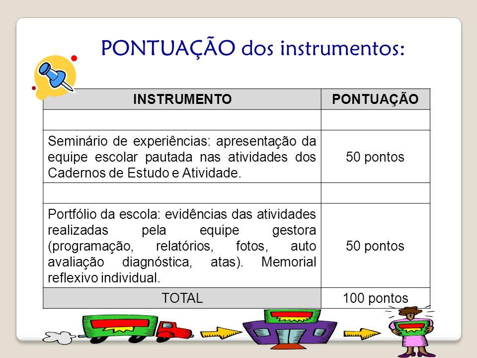 PONTUAÇÃO dos instrumentos: