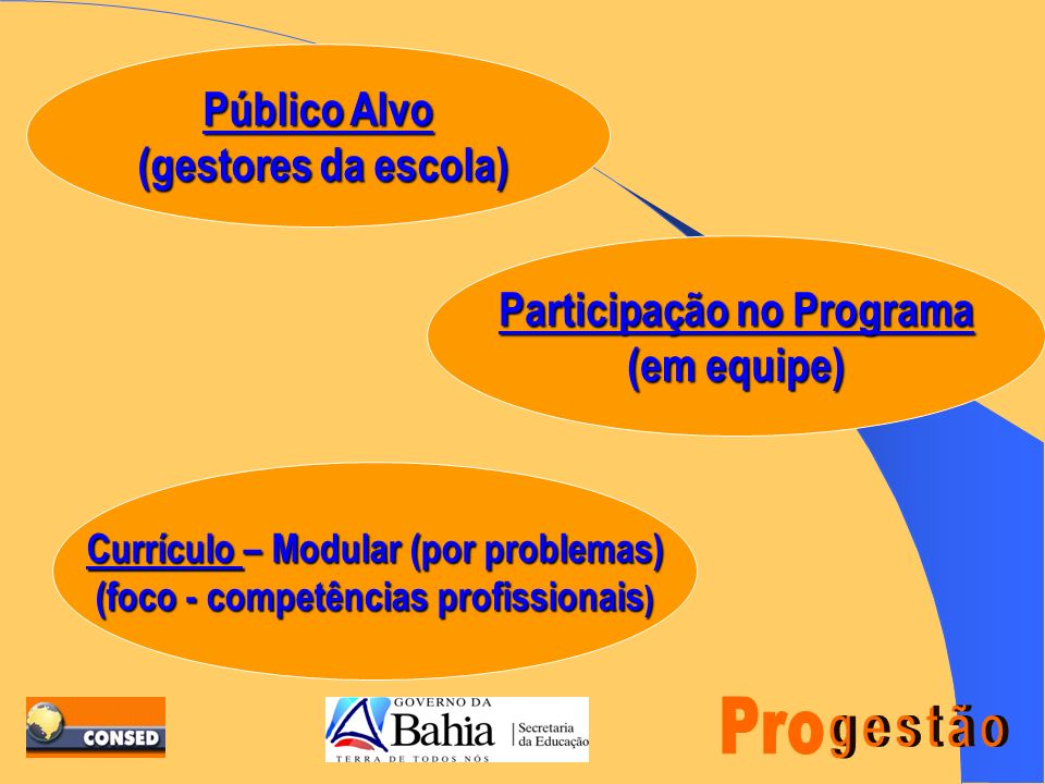 Público Alvo (gestores da escola) Participação no Programa (em equipe)