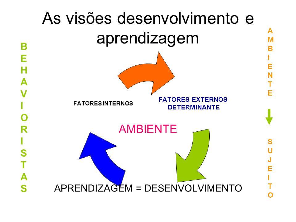 As visões desenvolvimento e aprendizagem
