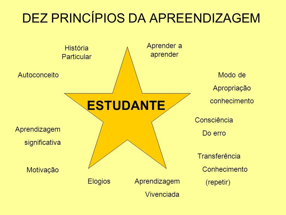 DEZ PRINCÍPIOS DA APREENDIZAGEM