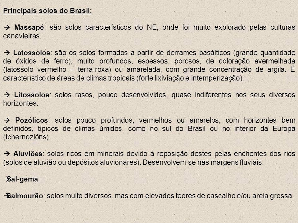 Principais solos do Brasil: