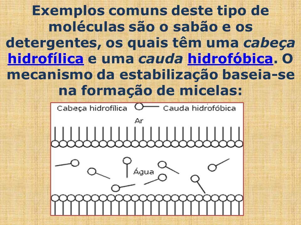 Exemplos comuns deste tipo de moléculas são o sabão e os detergentes, os quais têm uma cabeça hidrofílica e uma cauda hidrofóbica.