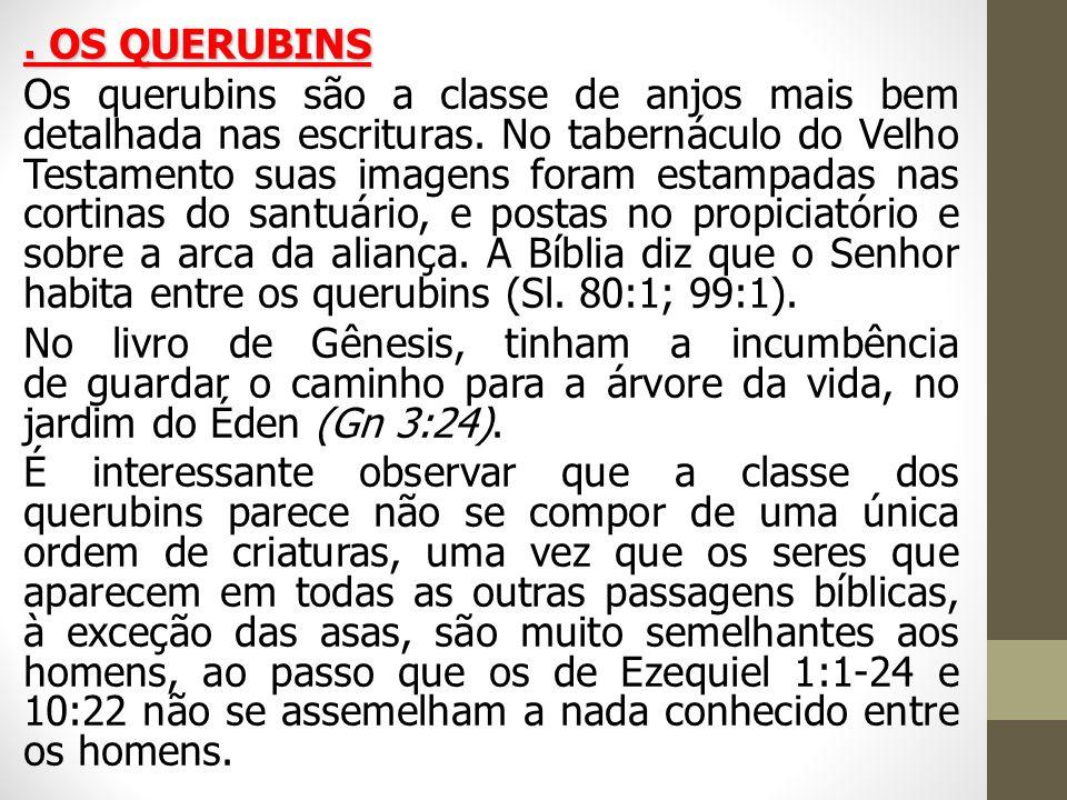 OS QUERUBINS Os querubins são a classe de anjos mais bem detalhada nas escrituras.
