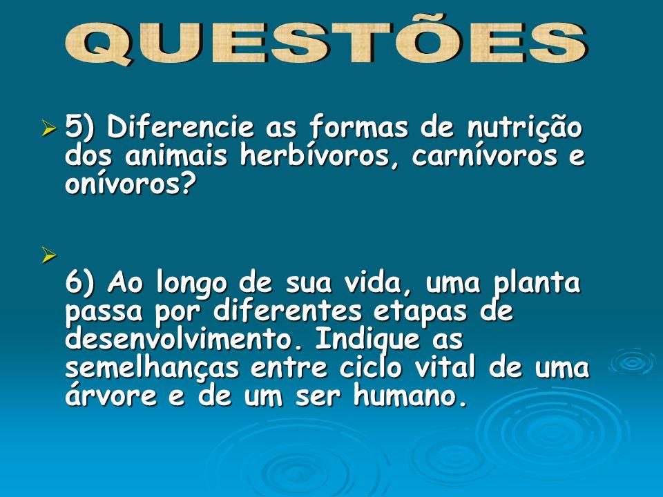 QUESTÕES 5) Diferencie as formas de nutrição dos animais herbívoros, carnívoros e onívoros
