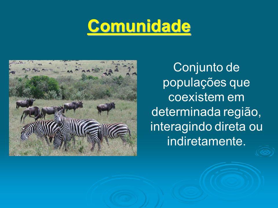 ComunidadeConjunto de populações que coexistem em determinada região, interagindo direta ou indiretamente.