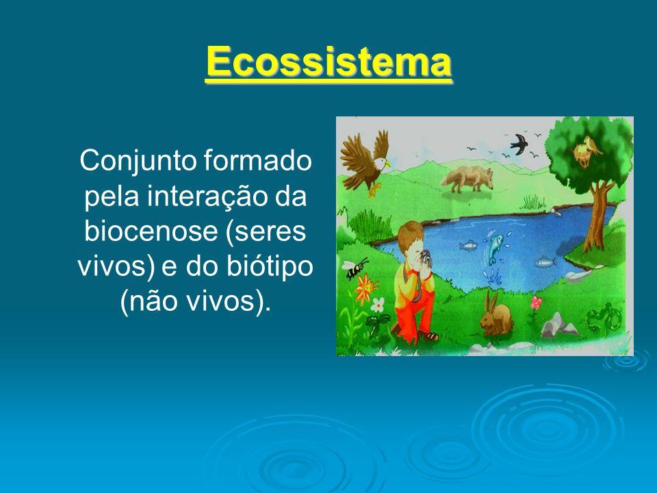 EcossistemaConjunto formado pela interação da biocenose (seres vivos) e do biótipo (não vivos).
