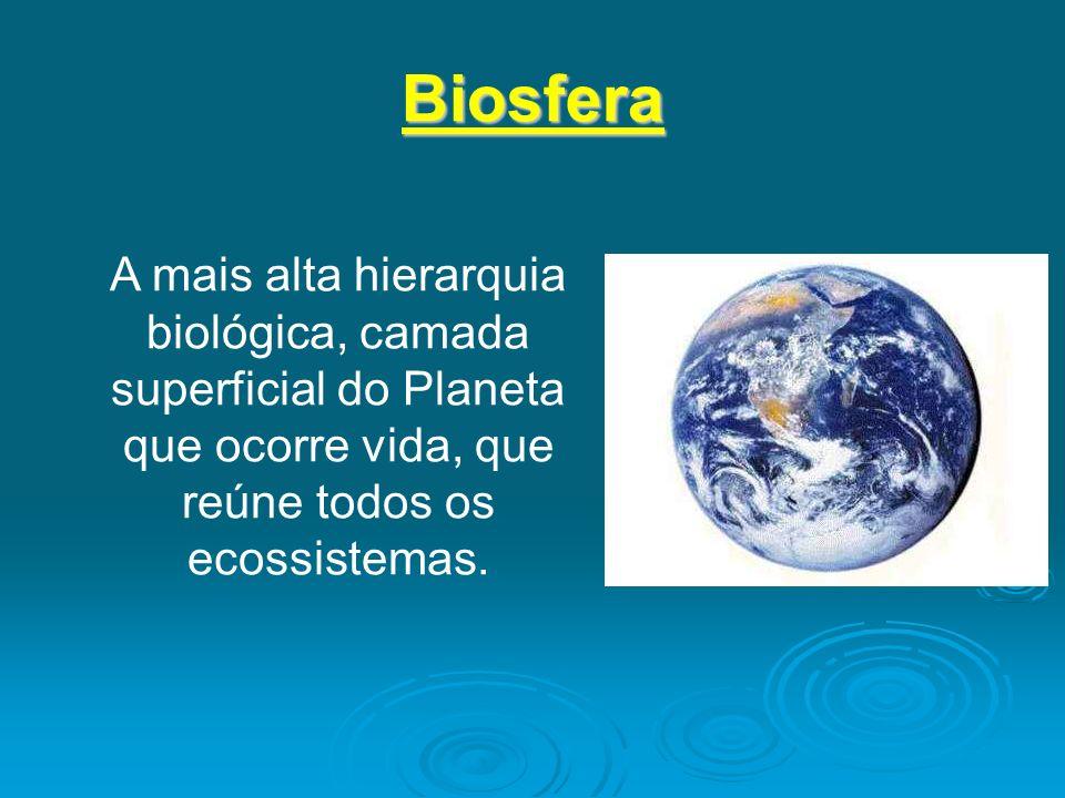 BiosferaA mais alta hierarquia biológica, camada superficial do Planeta que ocorre vida, que reúne todos os ecossistemas.