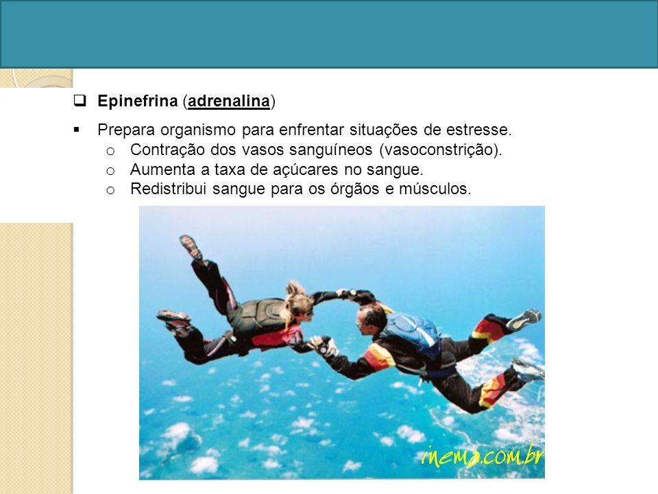 Epinefrina (adrenalina)