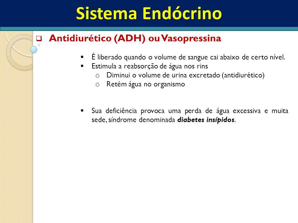Sistema Endócrino Antidiurético (ADH) ou Vasopressina