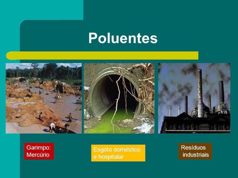 Poluentes Garimpo: Mercúrio Resíduos industriais Esgoto doméstico