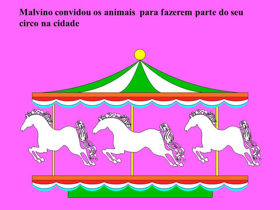 Malvino convidou os animais para fazerem parte do seu circo na cidade