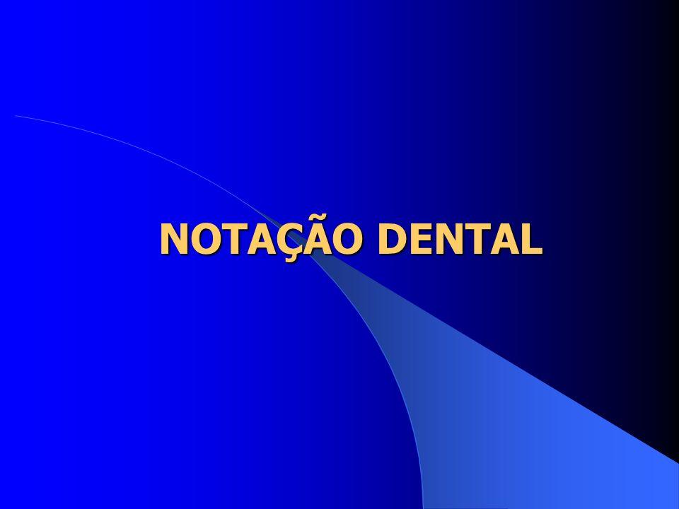 NOTAÇÃO DENTAL