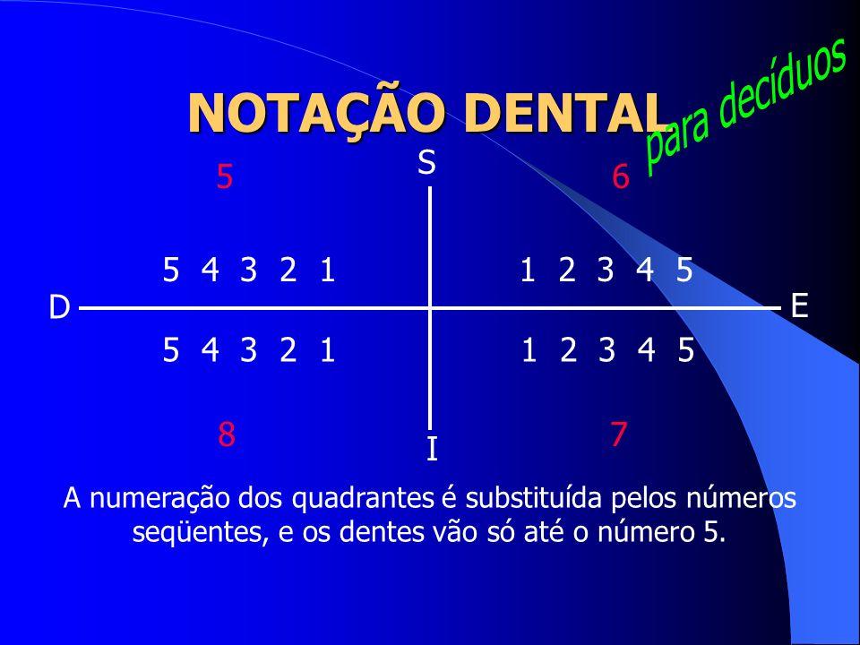 para decíduos NOTAÇÃO DENTAL S 5 6 5 4 3 2 1 1 2 3 4 5 D E 5 4 3 2 1