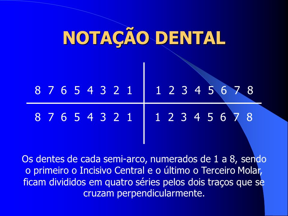 NOTAÇÃO DENTAL 8 7 6 5 4 3 2 1. 1 2 3 4 5 6 7 8. 8 7 6 5 4 3 2 1. 1 2 3 4 5 6 7 8.