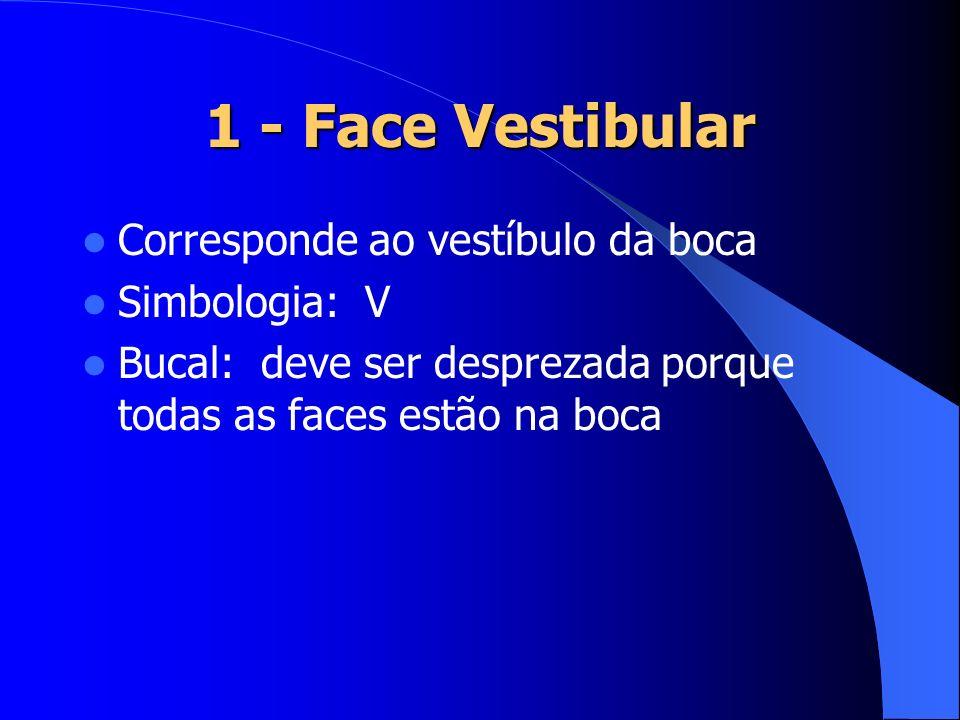 1 - Face Vestibular Corresponde ao vestíbulo da boca Simbologia: V