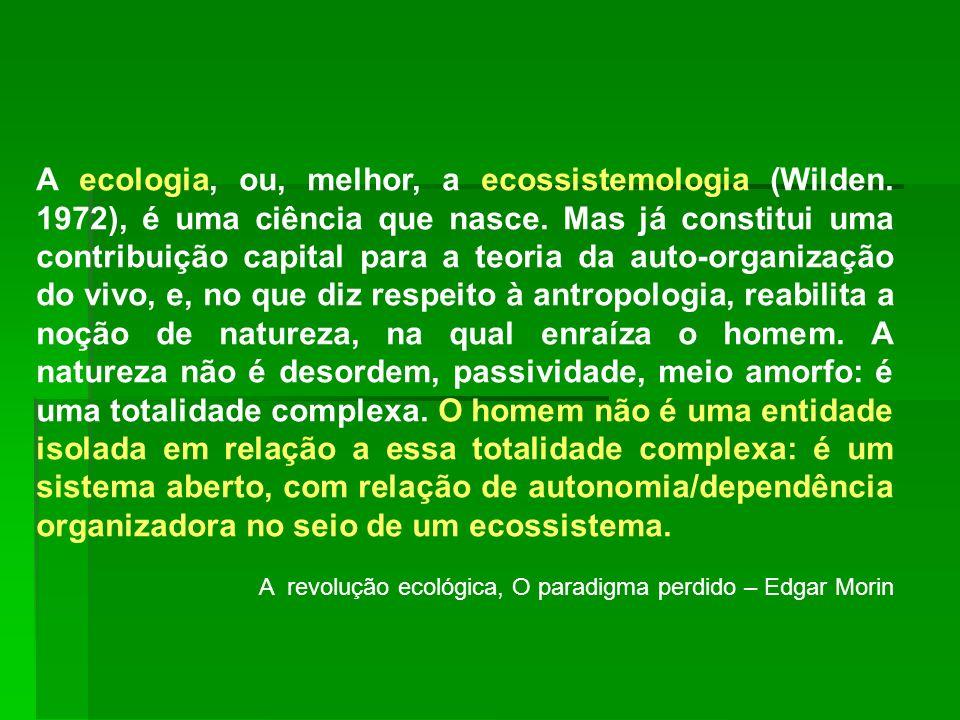 A ecologia, ou, melhor, a ecossistemologia (Wilden