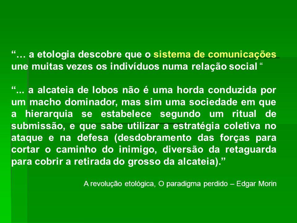 … a etologia descobre que o sistema de comunicações une muitas vezes os indivíduos numa relação social