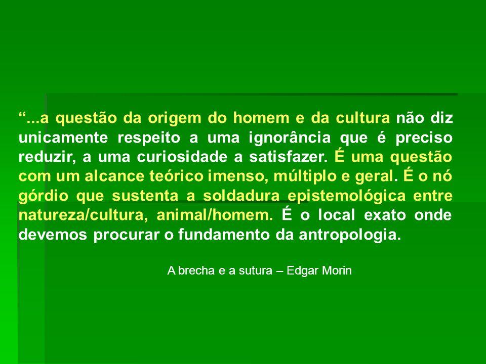 A brecha e a sutura – Edgar Morin
