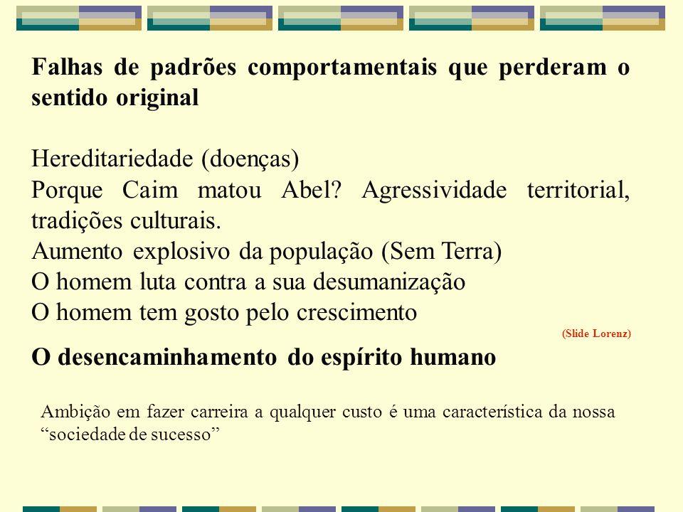 Falhas de padrões comportamentais que perderam o sentido original