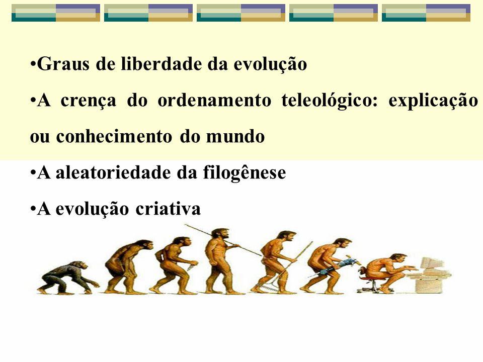 Graus de liberdade da evolução