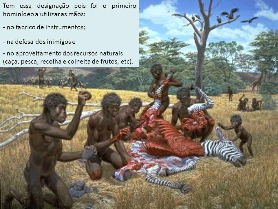 Tem essa designação pois foi o primeiro hominídeo a utilizar as mãos: