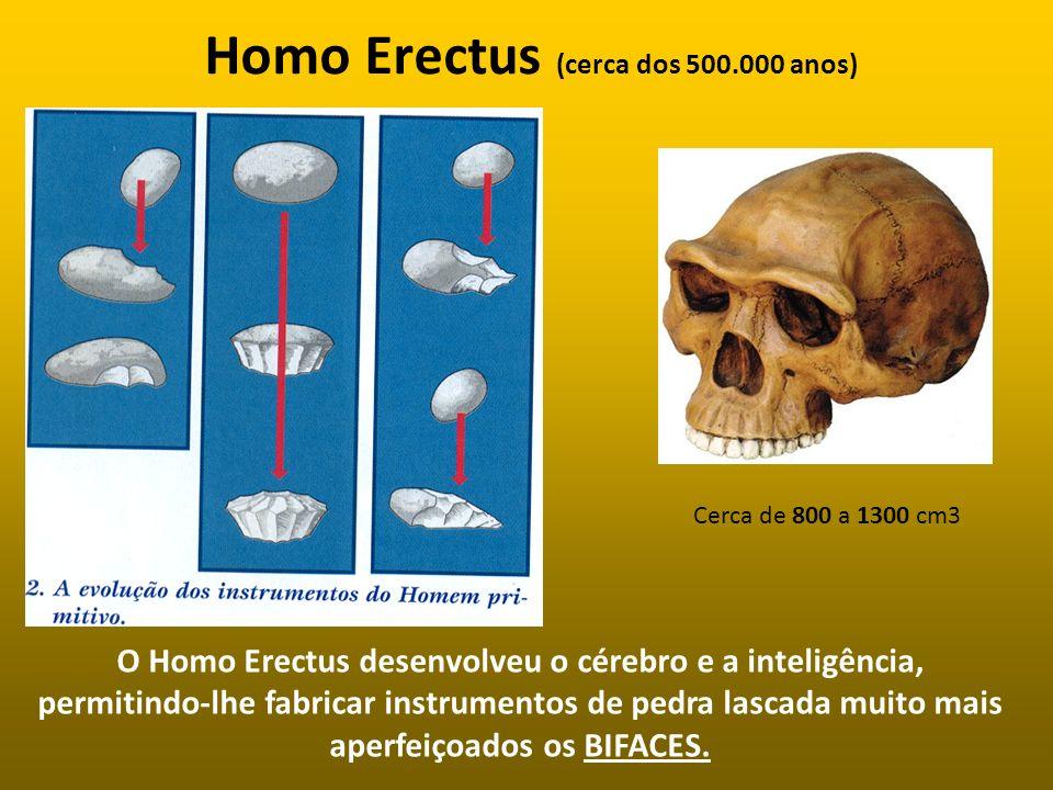 Homo Erectus (cerca dos 500.000 anos)