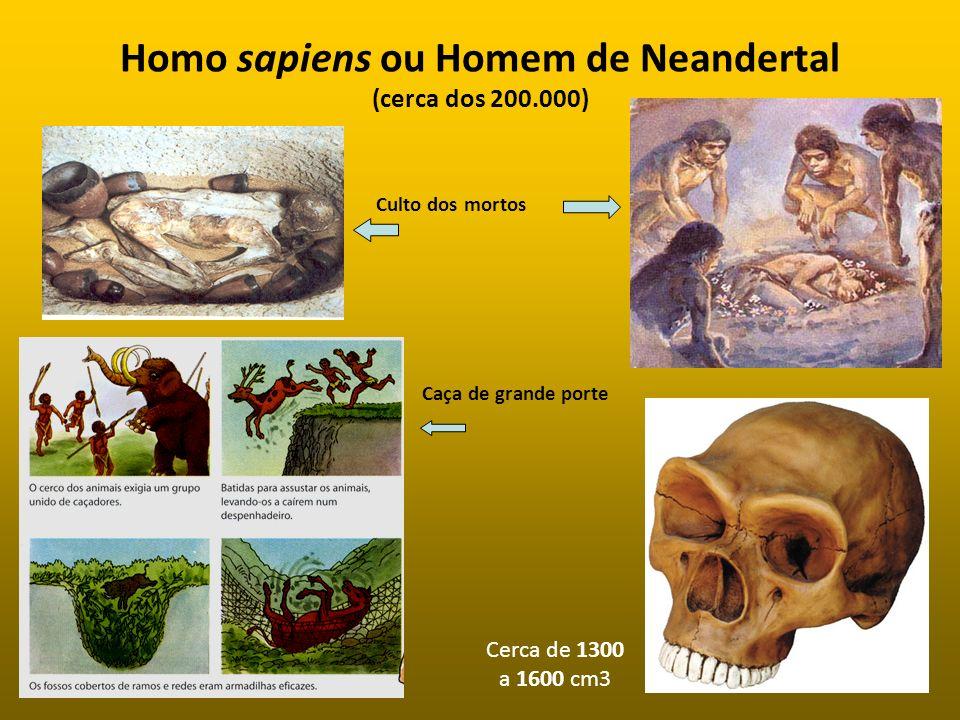 Homo sapiens ou Homem de Neandertal (cerca dos 200.000)
