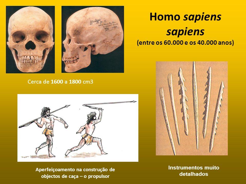 Homo sapiens sapiens (entre os 60.000 e os 40.000 anos)