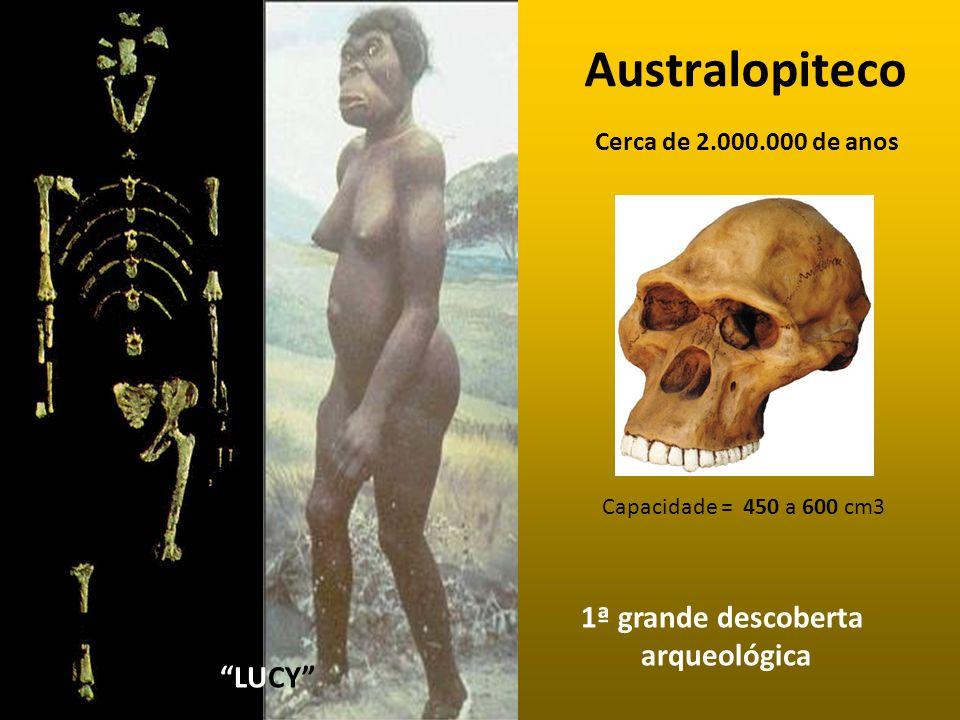 Australopiteco 1ª grande descoberta arqueológica LUCY