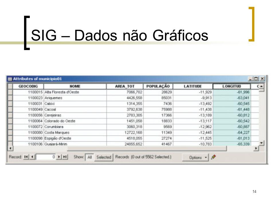 SIG – Dados não Gráficos