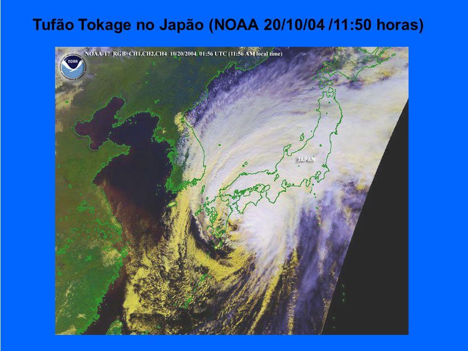 Tufão Tokage no Japão (NOAA 20/10/04 /11:50 horas)
