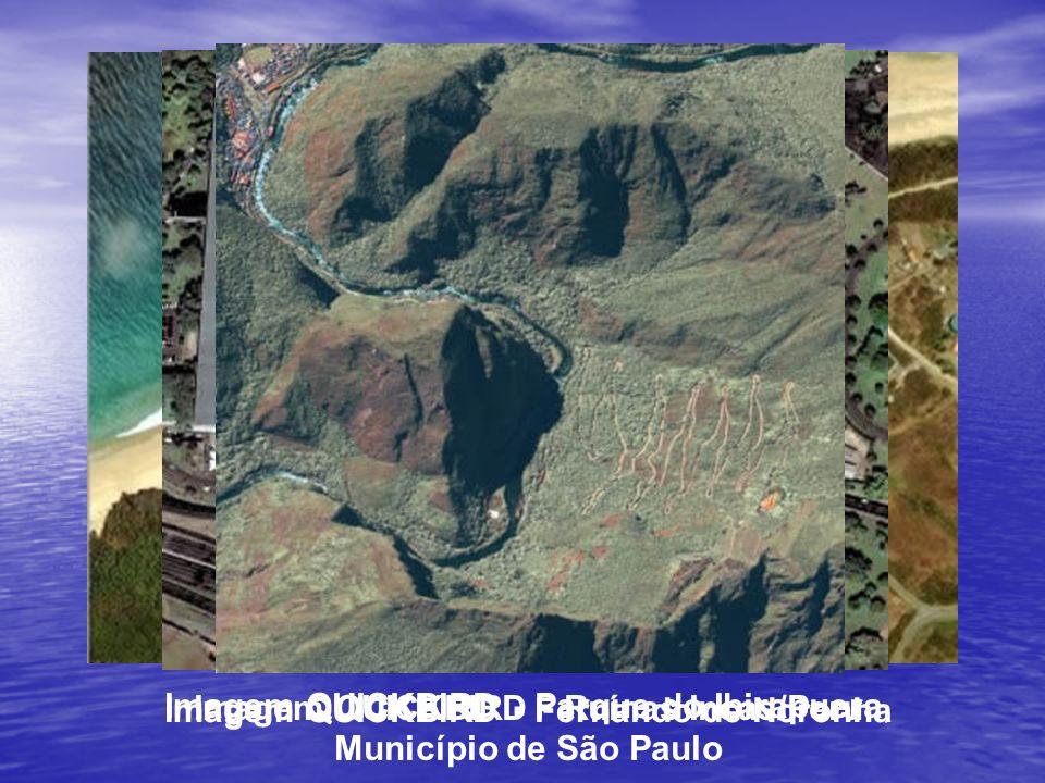 Imagem QUICKBIRD - Ruínas Incas/Peru
