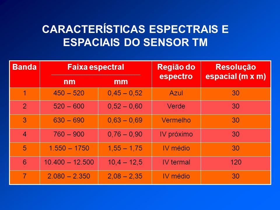 CARACTERÍSTICAS ESPECTRAIS E ESPACIAIS DO SENSOR TM