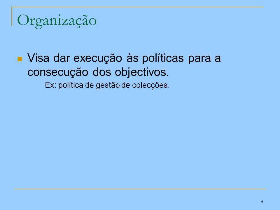 Organização Visa dar execução às políticas para a consecução dos objectivos.