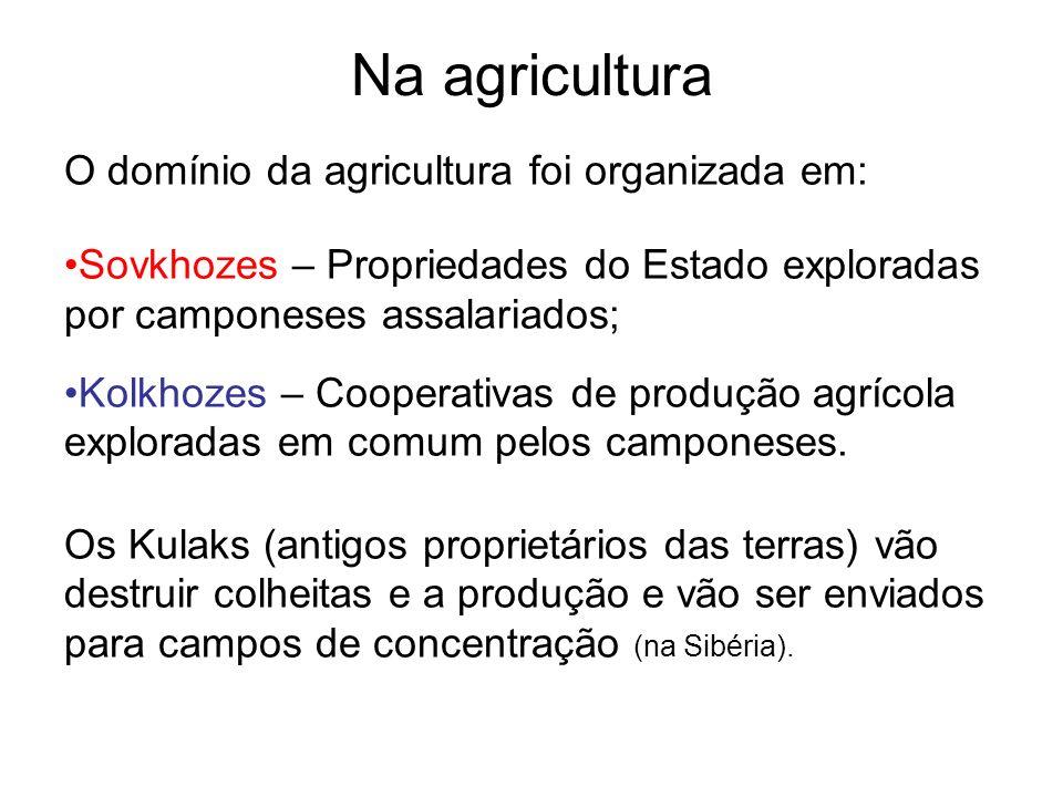 Na agricultura O domínio da agricultura foi organizada em: