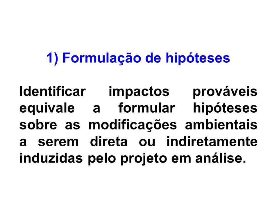 1) Formulação de hipóteses
