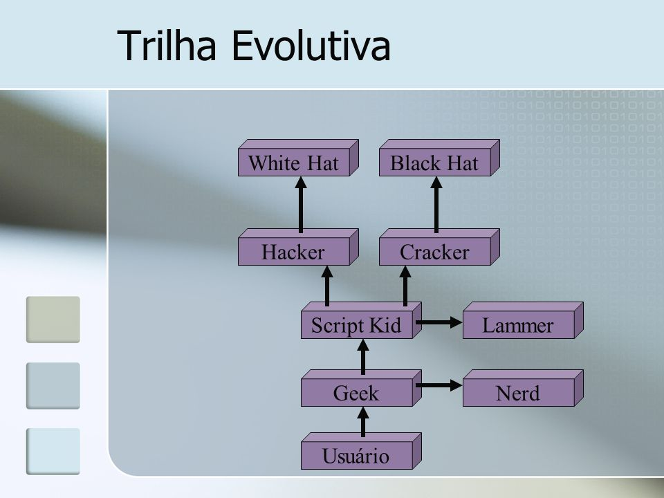 Trilha Evolutiva White Hat Black Hat Hacker Cracker Script Kid Lammer