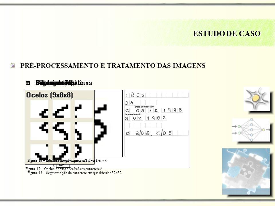 ESTUDO DE CASO PRÉ-PROCESSAMENTO E TRATAMENTO DAS IMAGENS