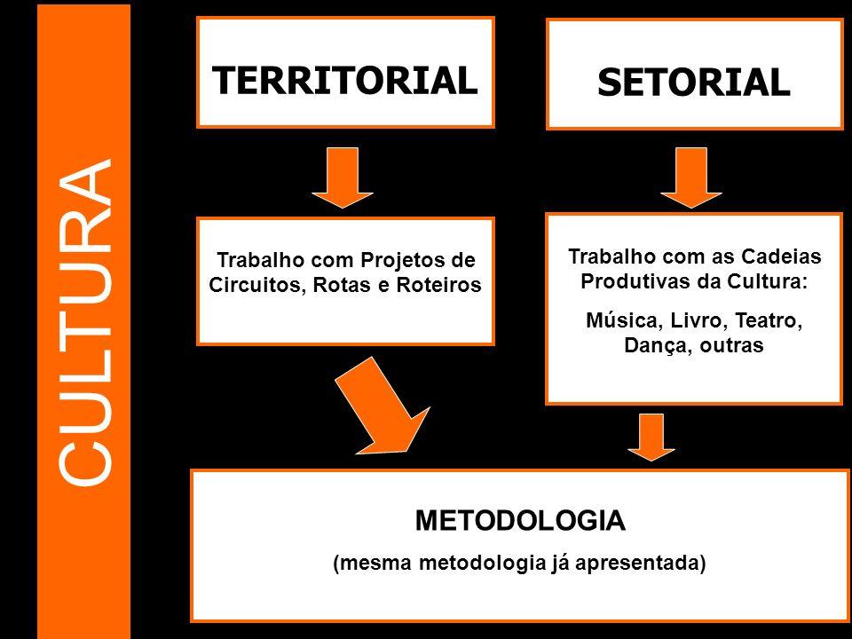 CULTURA TERRITORIAL SETORIAL METODOLOGIA