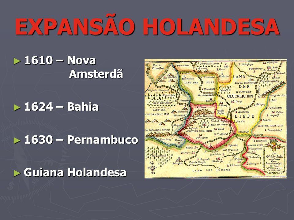 EXPANSÃO HOLANDESA 1610 – Nova Amsterdã 1624 – Bahia 1630 – Pernambuco