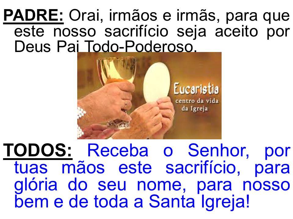 PADRE: Orai, irmãos e irmãs, para que este nosso sacrifício seja aceito por Deus Pai Todo-Poderoso.