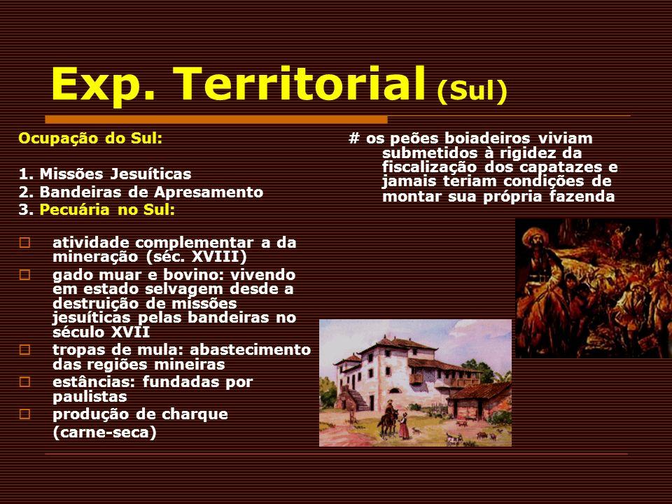 Exp. Territorial (Sul) Ocupação do Sul: 1. Missões Jesuíticas