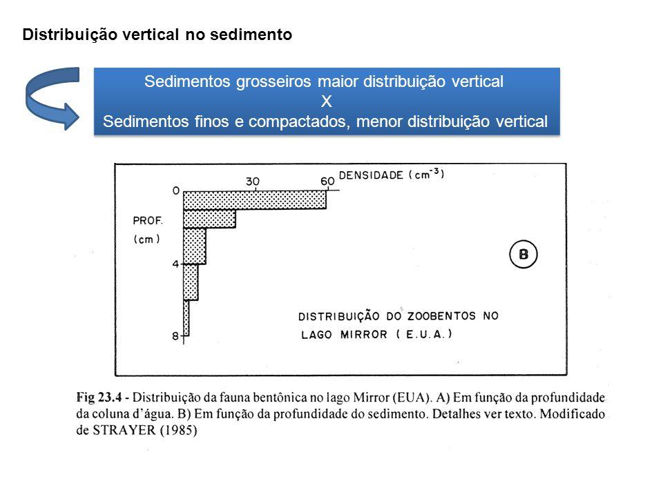 Distribuição vertical no sedimento