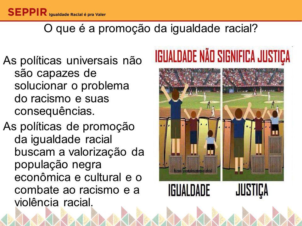 O que é a promoção da igualdade racial