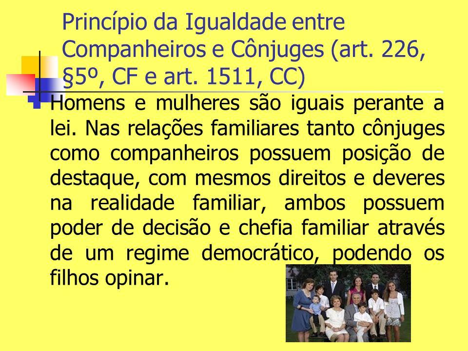 Princípio da Igualdade entre Companheiros e Cônjuges (art