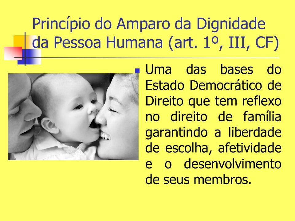 Princípio do Amparo da Dignidade da Pessoa Humana (art. 1º, III, CF)