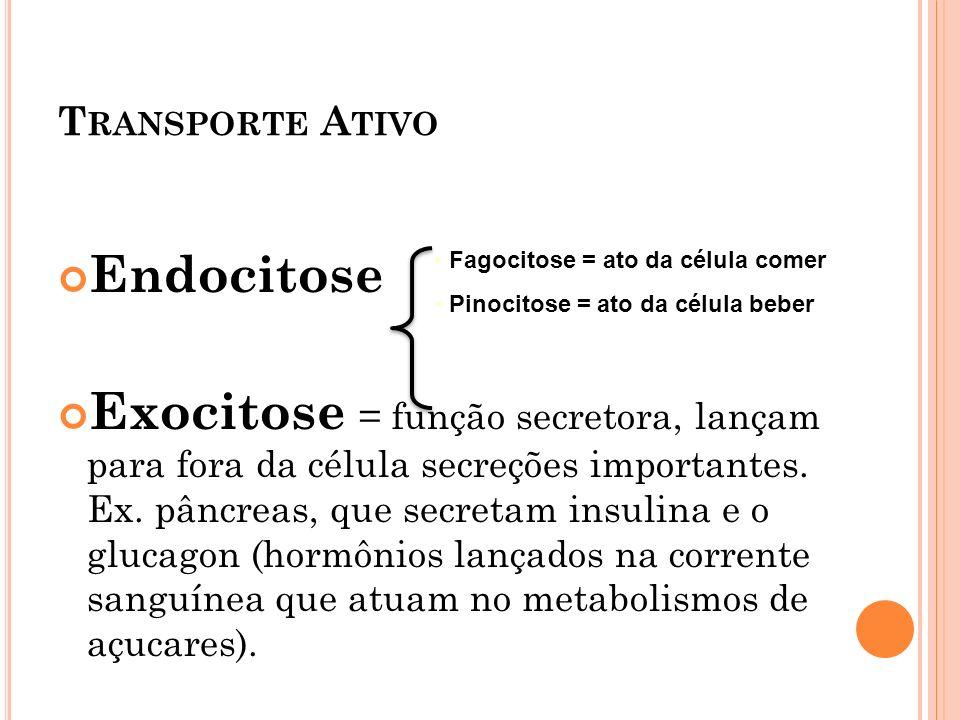 Transporte Ativo Endocitose.