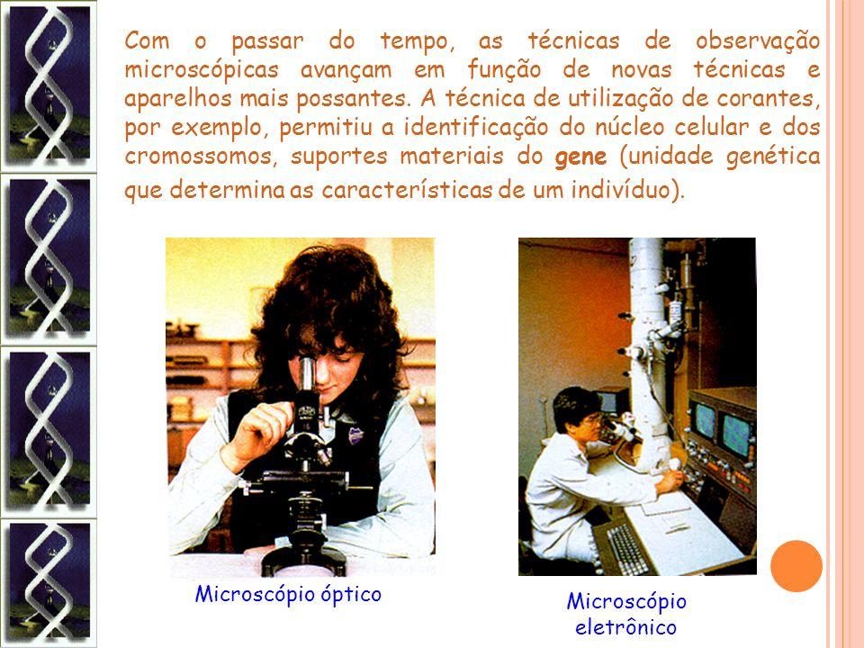 Microscópio eletrônico